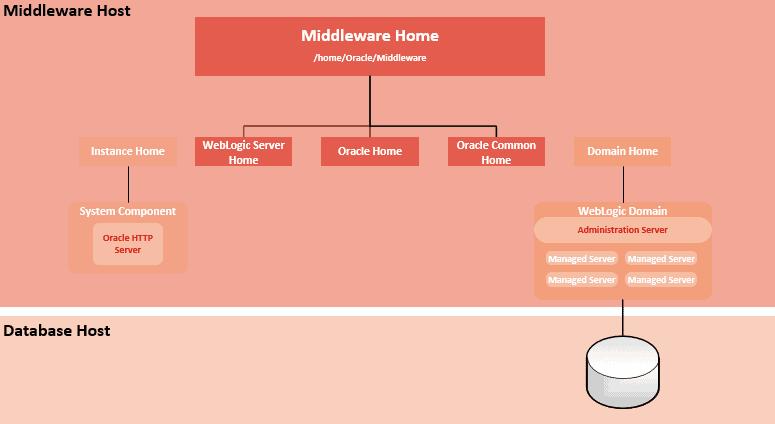 Oracle Forms bzw. Fusion Middleware Architektur